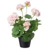 FEJKA yapay bitki, ıtır çiçeği pembe, 12 cm