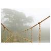 BJÖRKSTA resim, vahşi orman yolculuğu, 140x100 cm