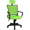 2063C0543 - Bürocci Alisa Plastik Ayaklı Ofis Koltuğu - Yeşil