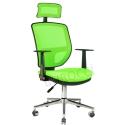 2051P0543 - Bürocci Eva Fileli Başlıklı Kromajlı Koltuk-Yeşil